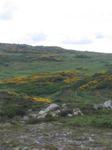Ireland 174